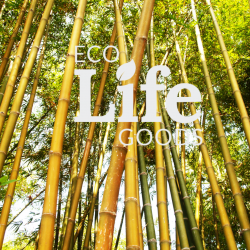 What Should You Look For In Eco-Friendly Products?