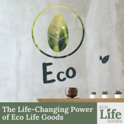 The Life-Changing Power of Eco Life Goods